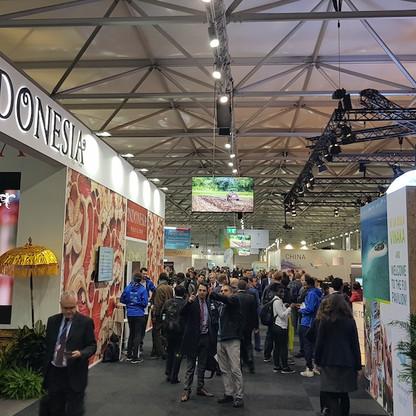 Delegation pavilions at COP23.jpg
