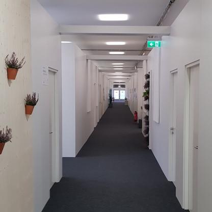 Delegation Offices at COP23.jpg