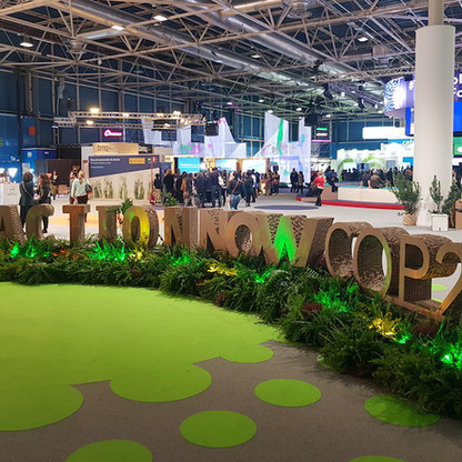 Green zone at COP25.jpg
