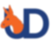Simple UDems Logo JPG.jpg