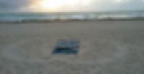 Screen Shot 2019-01-22 at 2.44.16 PM.png