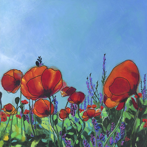 Field of Poppies 2