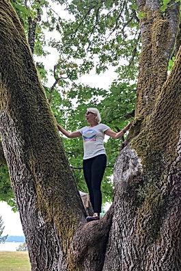 In a tree 1 July 2019.jpg