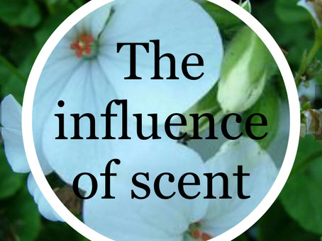 The Influence of scent