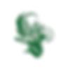 dessin fleur verte arabesque