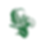 dessin fleur vert arabesque