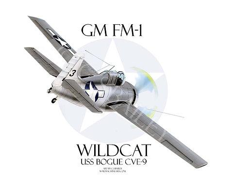 FM Wildcat  wheels up