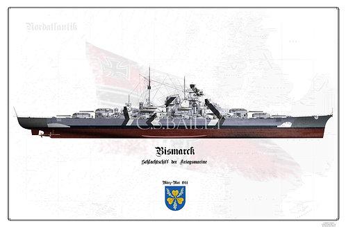 Bismarck Baltic Camo Full FH print