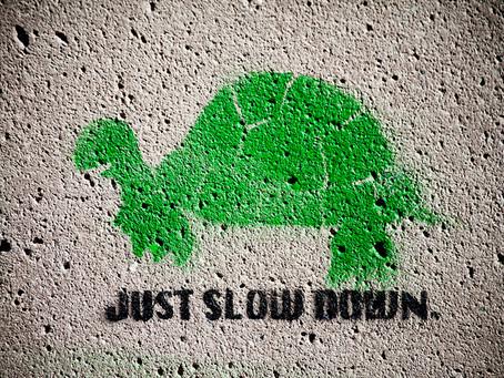 Slow Down Fashion