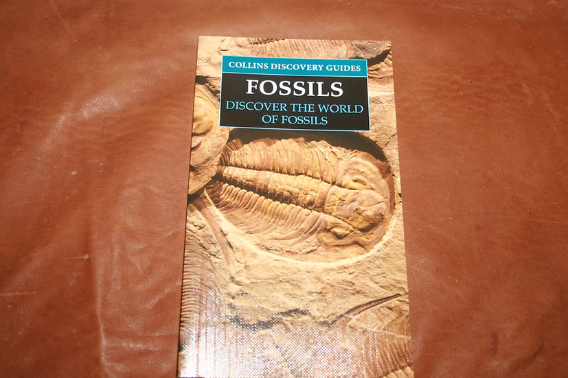 Collins Discovery Guides Fossils
