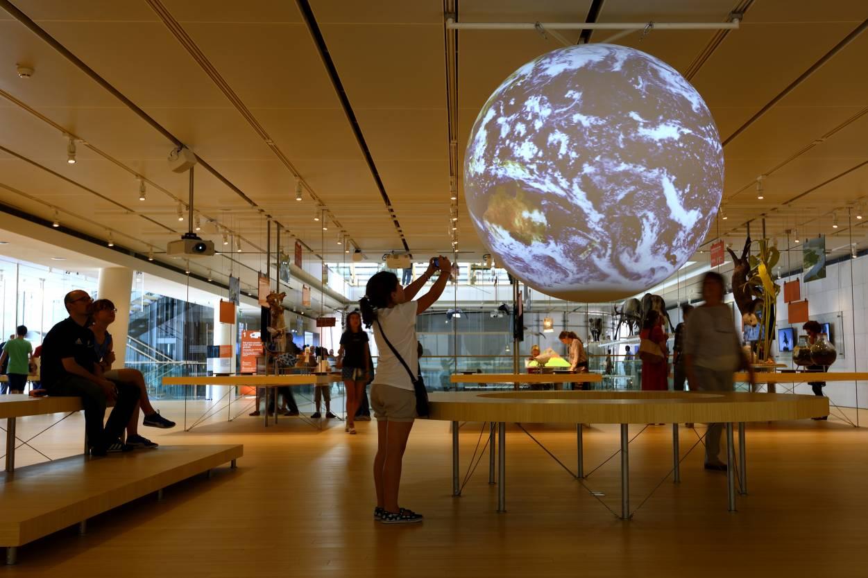 Museo delle Scienze
