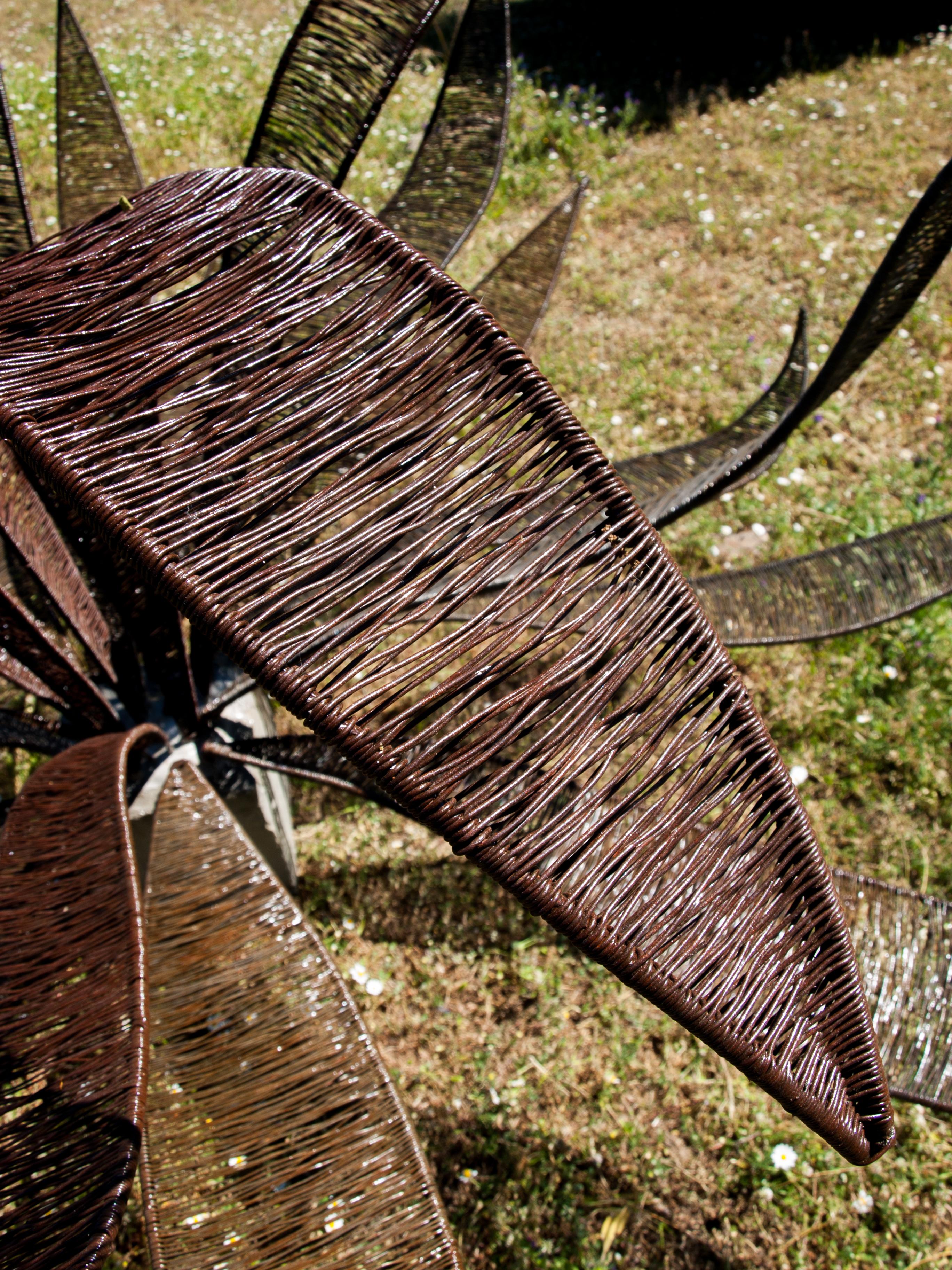 Détail tréssage de l'agave