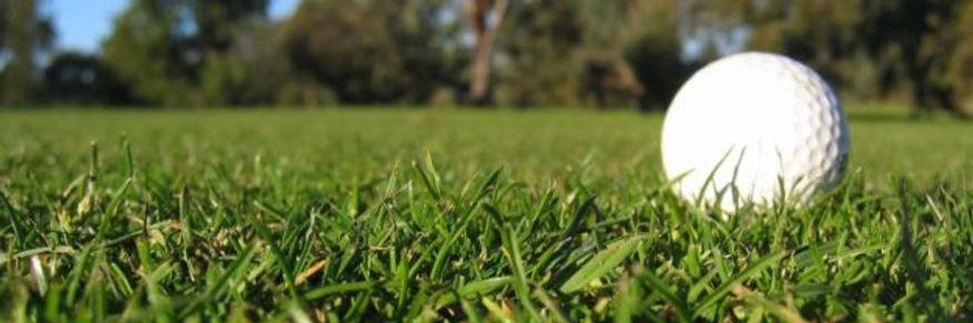golf-grass-banner-625x208.jpg