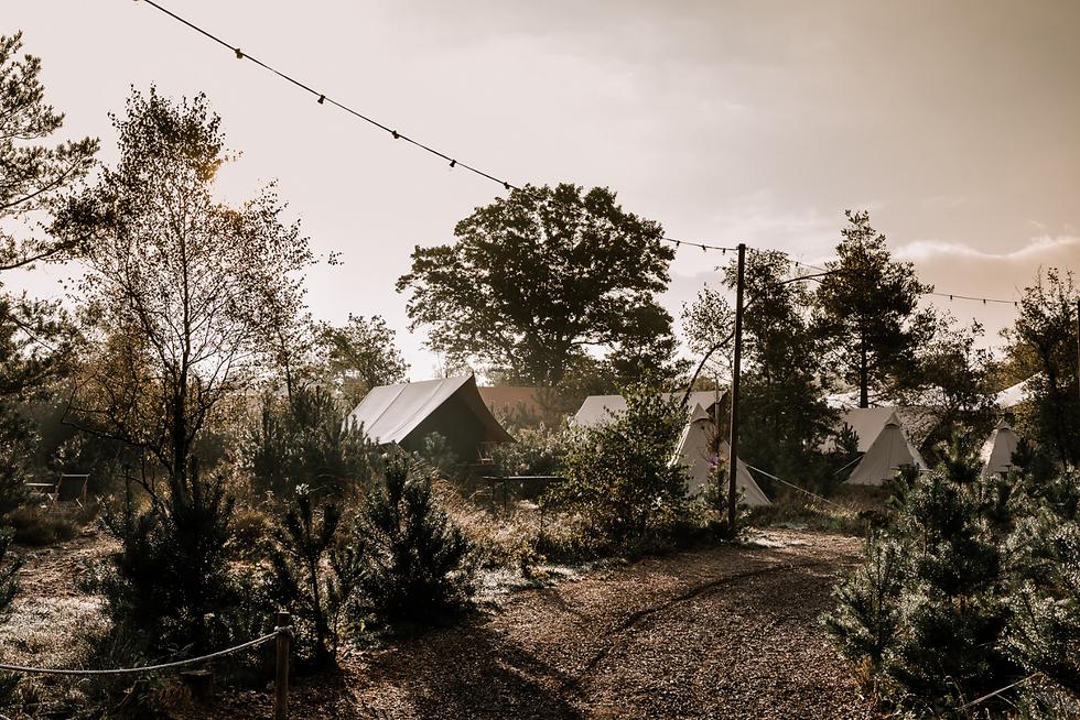 Glamp-Outdoor-Camp-awajis.png