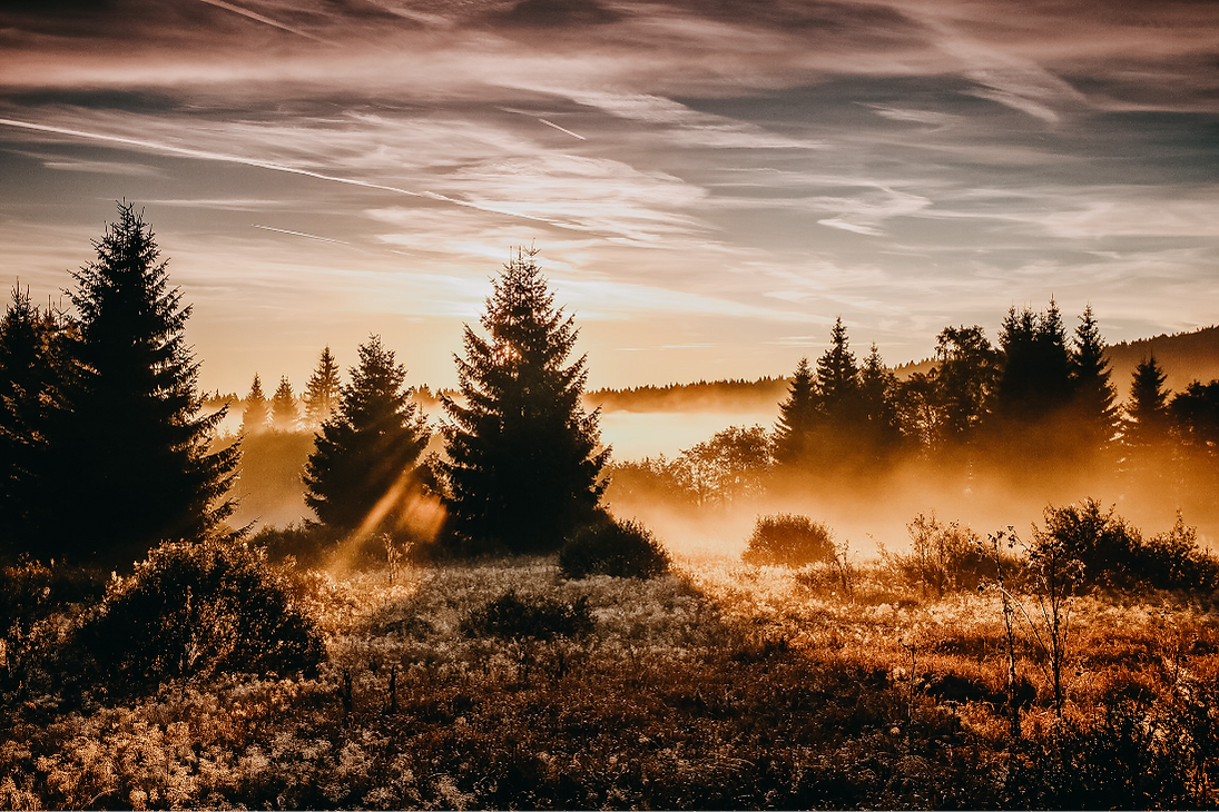glamp-outdoor-camp-sunrise.png
