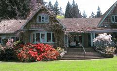 The Camellia Tea Room