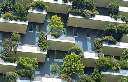 Uso di Nature-Based Solutions nel progetto architettonico e urbano