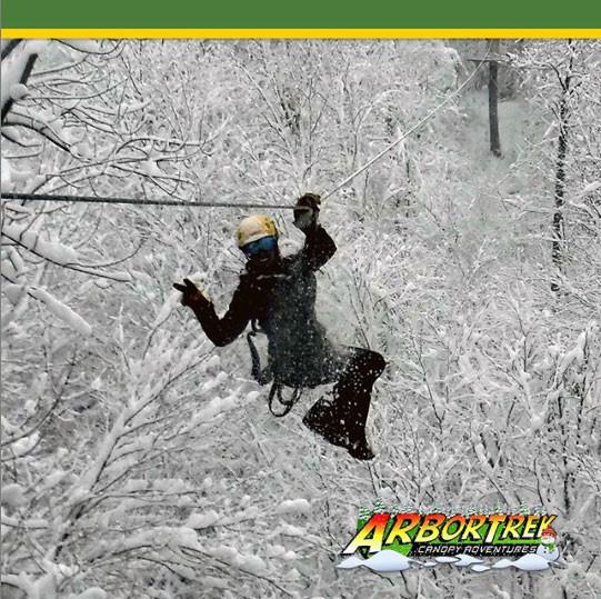 ArborTrek Canopy Adventures Vermont