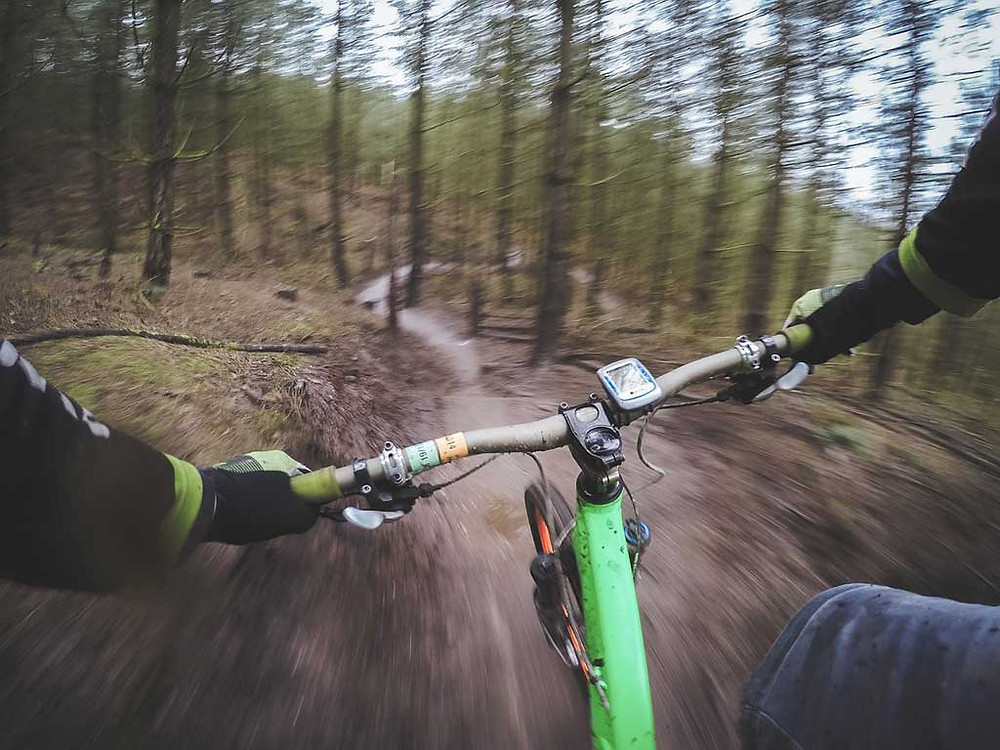 mountain biking in the woods