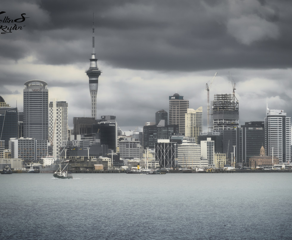 Auckland skyline JPEG 100.jpg