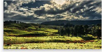 panoramic acrylic 2.JPG