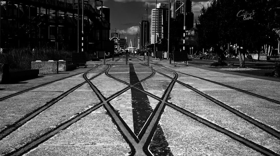 BW  Auckland train lines by the wharf