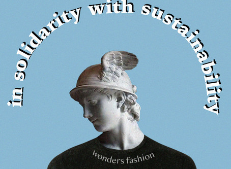 fashion: in solidarity with sustainability
