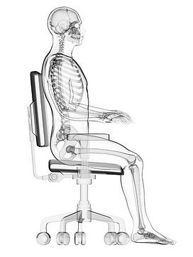 Seating Direct Posture support