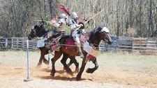 Alabama Medieval Fantasy Festival 2019