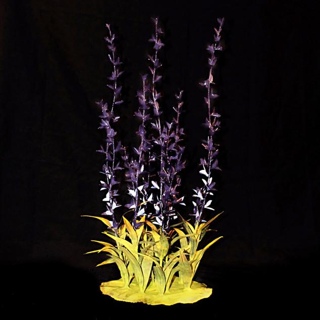 Wild Lavender 11 Stems