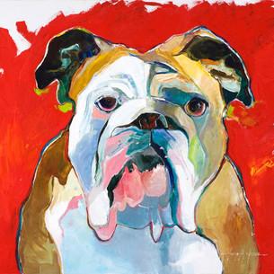 Georgia Bull Dog