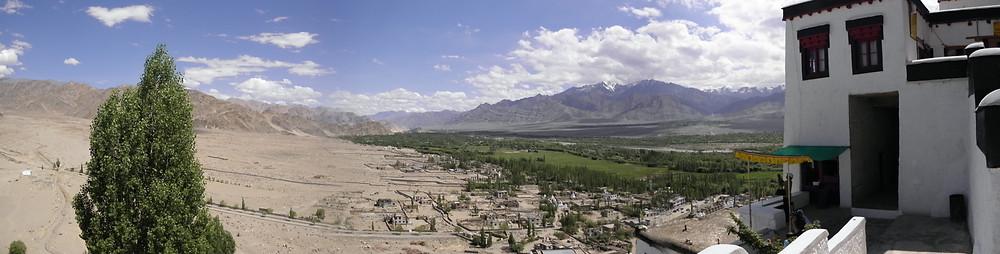 Greenery around Sindhu Basin amidst the barren mountains