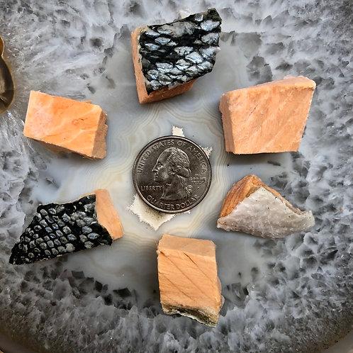 Freeze Dried Wild Alaskan Bristol Bay Sockeye Salmon