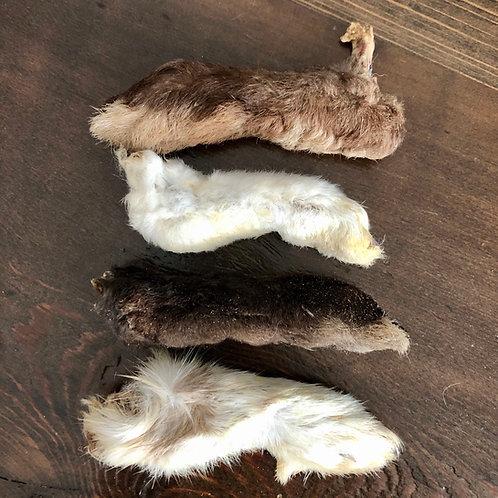 Dried Rabbit Feet