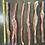 Thumbnail: Beef Bladder Sticks