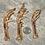 Thumbnail: Freeze Dried Pheasant Feet