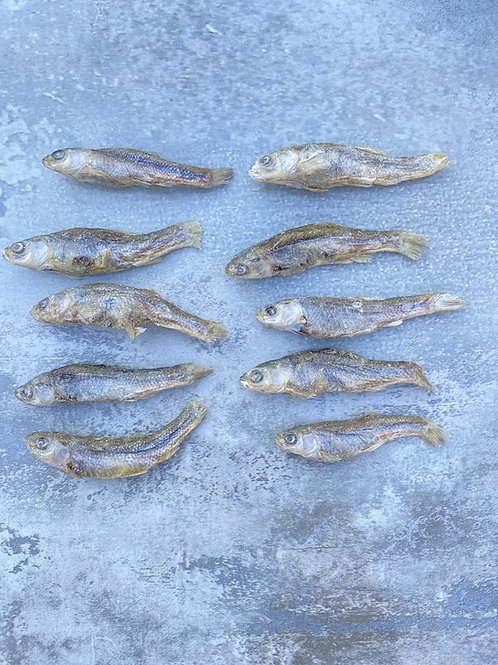 Freeze Dried Minnows