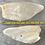 Thumbnail: Dried Cow Ear