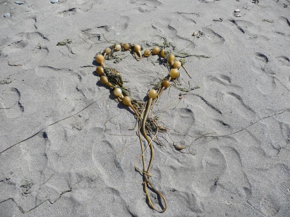 I had fun making this kelp heart & I love it.