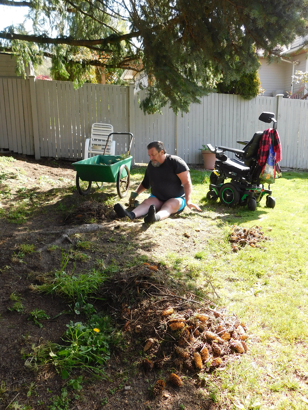 I helped him to the ground, so he could do a bit of clean up in the back yard. He makes the piles & then I move the garden cart near him, so he can put them in & I go dump it when it's full.
