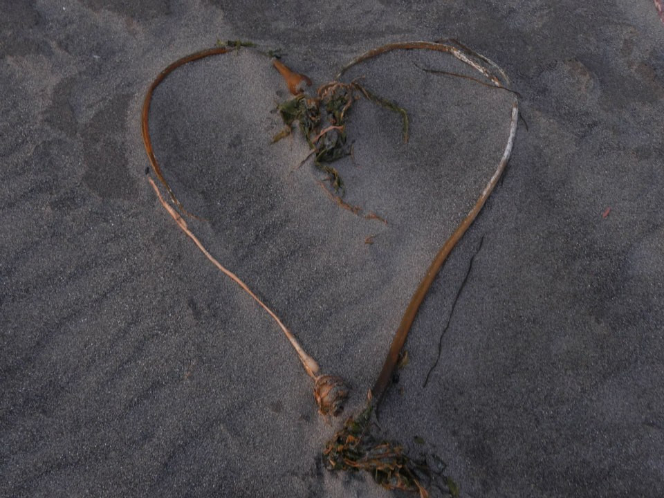 Whenever I can get to the beach, I always make hearts with things I find there.