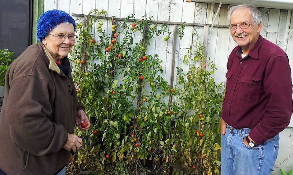 Mom & her Baby Brother, with His Tomatoes.