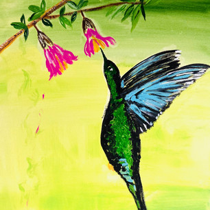 Hummingbird $175