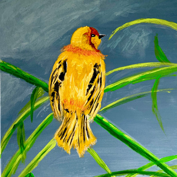 Goldfinch on Reed $175