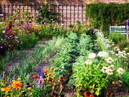 Awakening Our Inner Artist With Gardening