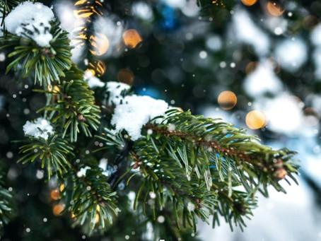 Holiday Season Vibrations!