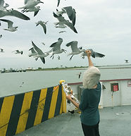 Pic with Birds.jpg