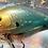 Thumbnail: Luckycraft Style Squarebill Crankbait - Wild Gill Shad