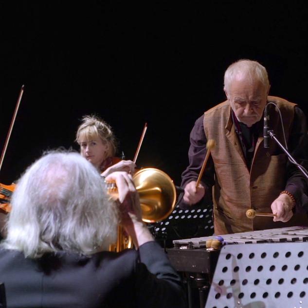 Karl - Stuttgart Konzert Vibraphone.jpg