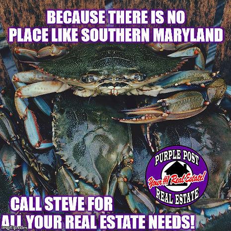 blue crabs 1.jpg